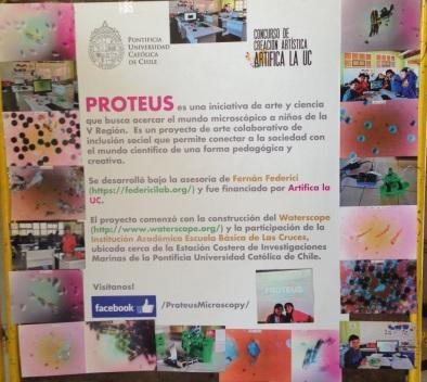 proteus 3